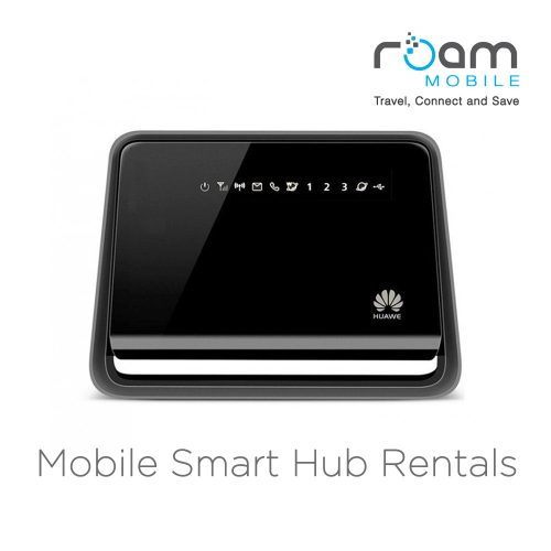roam portable internet